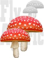 amanita mushrooms