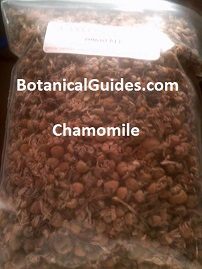 bulk chamomile