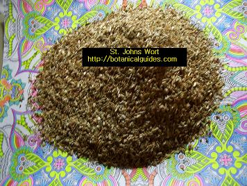 st johns wort dried herb