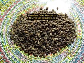 HBWR Seeds