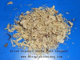 yucca root chopped and dried